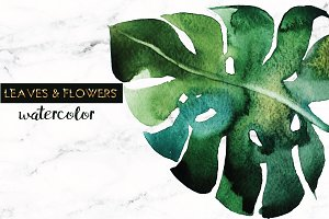 leaves & flowers watercolor+ logos