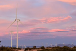 Wind energy park at sunset
