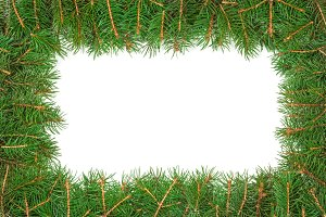 Christmas frame made of fir branches isolated on white background