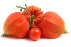 husk tomatoes or physalis with leaf isolated on white background