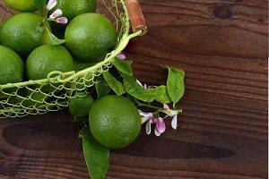 Lime Still Life