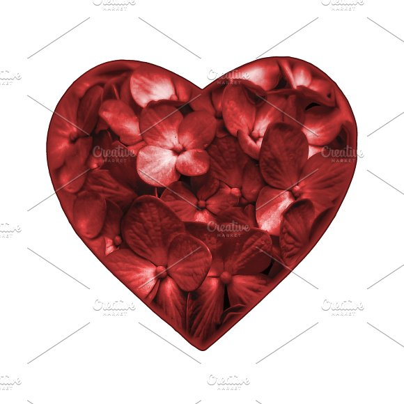 Isolated Floral Heart Shape Ornament