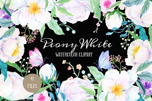 Watercolor Clipart Peony White