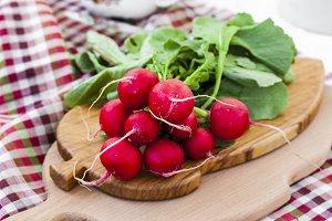 bundle of  bright fresh organic radishes with leaves