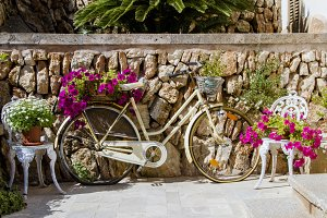 Old bicycle with potted flowers
