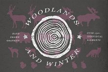 Woodlands & Winter Illustrations