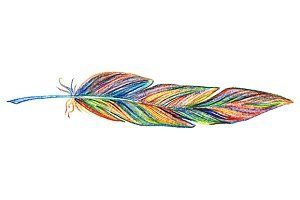 Rainbow colorful bird feather vector