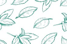 Eco peppermint leaves background