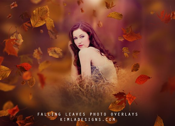 Falling Leaves Photo Overlays