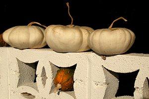 pumpkins on a balustrade