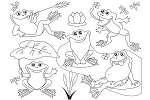 Vector Frogs Set