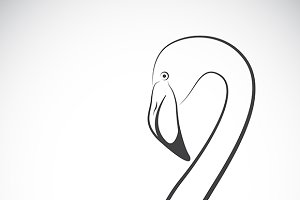 Vector of a flamingo design.