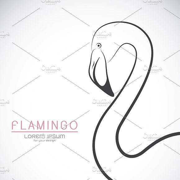 Vector Of A Flamingo Design
