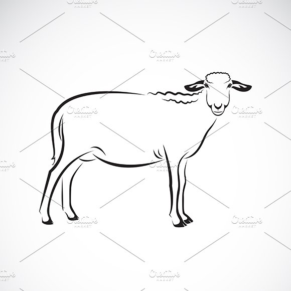 Vector Of A Sheep
