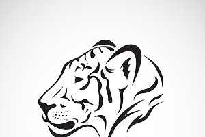 Vector of a tiger head.