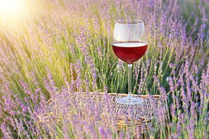 Glass of wine against lavender.