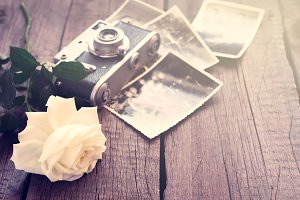 White rose, old photos and camera