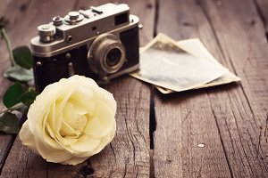 Yellow rose, old photos and camera