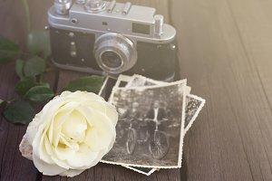 Retro camera, photo and rose