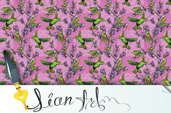 Colibri Birds And Flowers