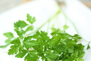 Parsley on white cloth
