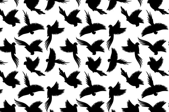 Black Birds Pattern