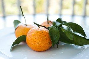 tropical fruit mandarine