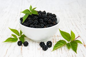 Bowl with Blackberries
