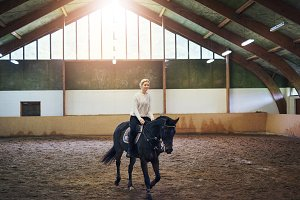 Female trotting on dark horse in paddock