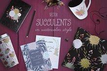 Vector watercolor succulents set