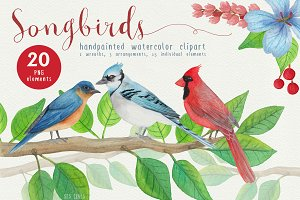 Song Birds Watercolor Clipart