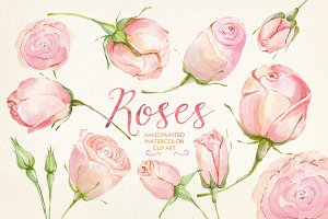 Watercolor clip art cream roses