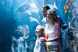 Happy family looking at fish in a tank