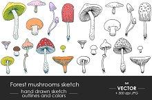 Forest mushrooms sketch