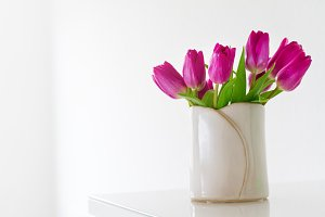 Home or holiday concept, lila tulips