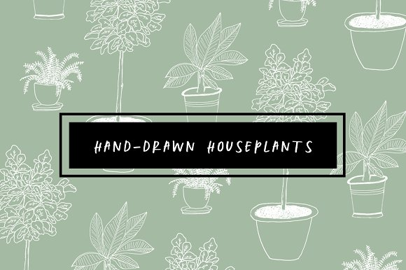 Hand-Drawn Houseplants