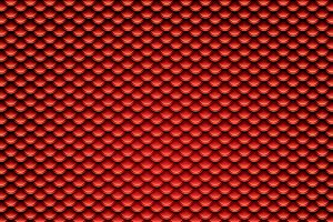 Squama texture