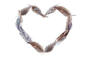 Watercolor feather heart vector