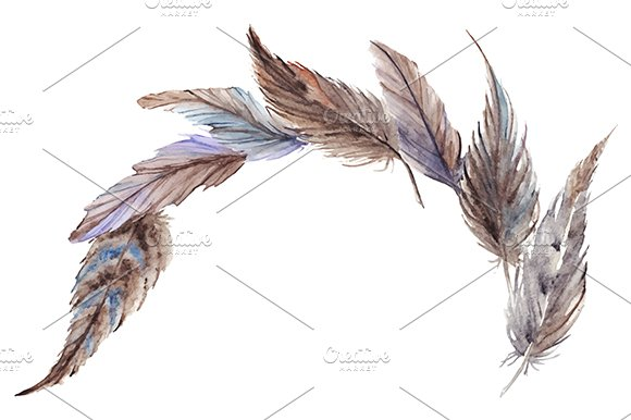 Watercolor Bird Feather Composition