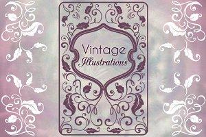 Vintage Illustrations & Ornaments