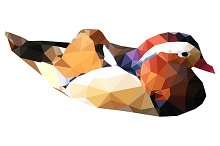 Triangle mandarin duck vector