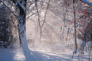 A Park in Winter #01