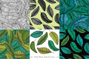 6 illustrations with banana leaves