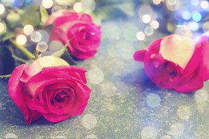 Beautiful pink roses and gerberas