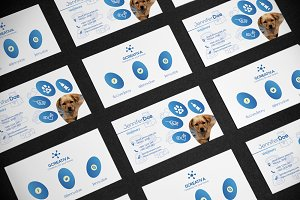 Business card medical orthopedist business card templates business card veterinary colourmoves