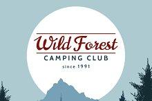 Wild pine tree forest background