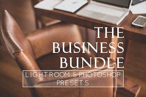 36 Business Branding LR & PS Presets