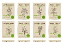 Vector hand drawn culinary herbs and spices posters set.