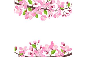 Blossoming cherry spring background. Apple tree of branch flowers and buds frame for text.