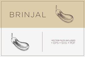 Brinjal -Hand Drawn Vector Vegetable